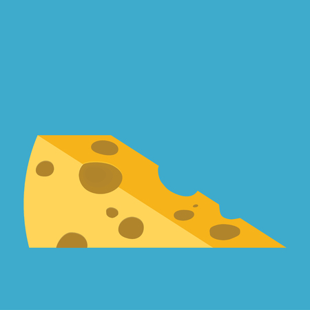 Piece of cheese. Flat style vector illustration.