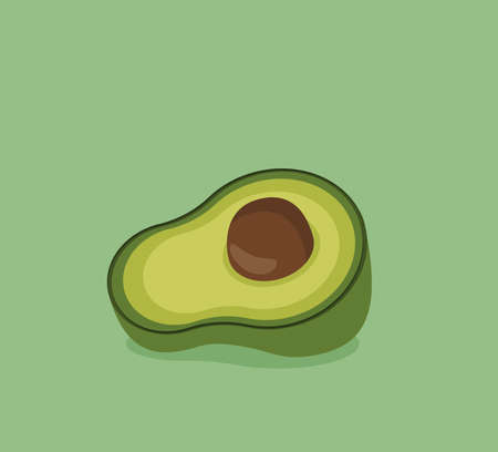 Flat vector avocado fruit isolated on color background