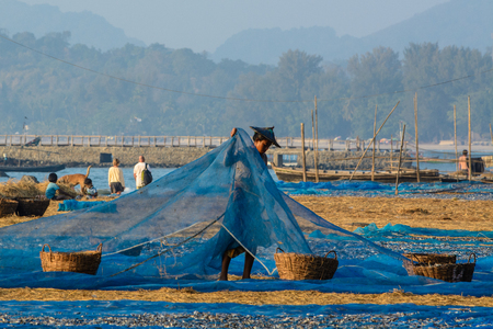 NGAPALI, MYANMAR - FEB 27, 2014: Burmese women at work, drying fresh fish on Ngapali Beach, Myanmar; Selling fish is the main income for the locals of Ngapali