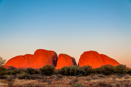 olgas: OUTBACK, AUSTRALIA - APRIL 30, 2009: The rock of Kata Tjuta (The Olgas)  changes into a luminous red as the sun is setting Editorial