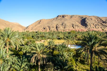 日付農園や背景、Garmeh、イランの山と塩の湖