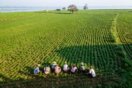 回避 U Bein 橋、アマラプラ、ミャンマーで農民