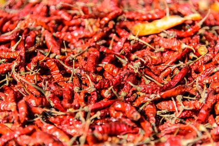 lombok: Red peppers, Tetebatu, Lombok