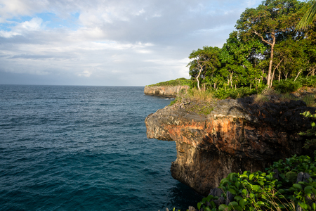 rough cliff of Samana, Dom. Rep.