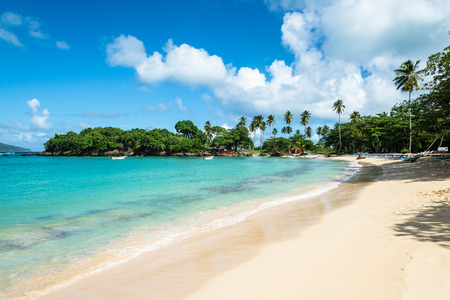 picturesque Beach of Playa Rincon around Las Galeras, Dominican Republic
