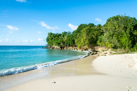tropical beach with turquoise water on Marie-Galante, Guadeloupe