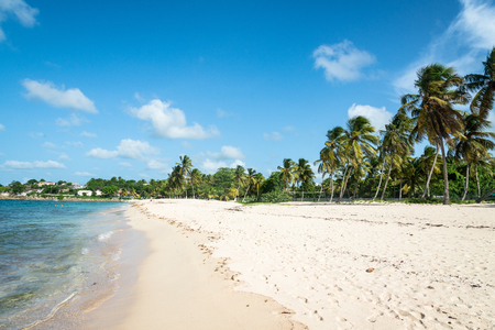 beachfront: beachfront of Anse-Bertrand, Guadeloupe Stock Photo