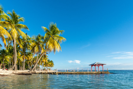 グアドループ (仏領) でプラージュ デ ラ カラベルのビーチ フロント 写真素材