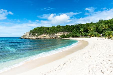 「アンス Laborde」、グアドループ (仏領) のビーチ 写真素材