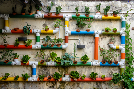 Urban Gardening - colorful pipes filled with salad and plants Stock Photo