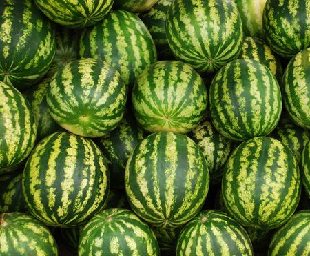 heap of the large ripe striped water-melons photo