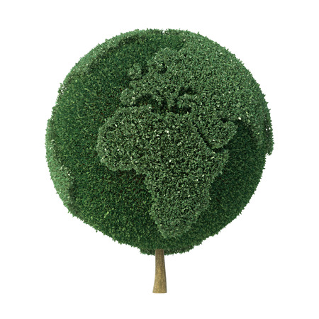 Topiary tree shaped as the Earth facing Europe and Africa