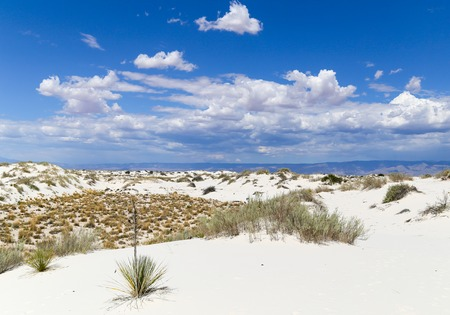 desert sand: Scenic view of a part of the White Sands National Monument dunefield in New Mexico, USA Stock Photo