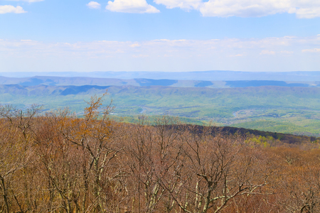 green ridge: Still leafless trees in the foreground and already green woods in the Blue Ridge Mountains seen from the Skyline Drive in Virgina.