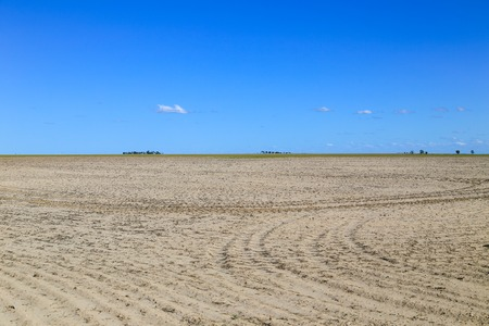 great plains: Fallow field with tractor tracks near Lakin in Kansas, USA.