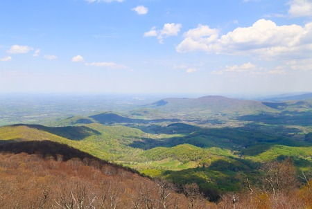 green ridge: Scenic view of the Blue Ridge Mountains from the Skyline Drive with green woods in the back and still leafless trees in the foreground.