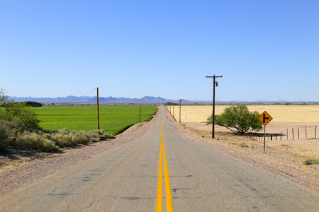 Road in the Sonoran Desert, Arizona, USA, with a green field to the one side and a field that is ready for harvest to the other. On both sides there are overhead power cables, in the back a mountain range.