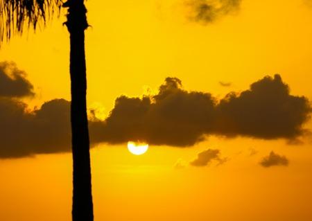 llave de sol: El sol se pone por encima de la Key West Bight.