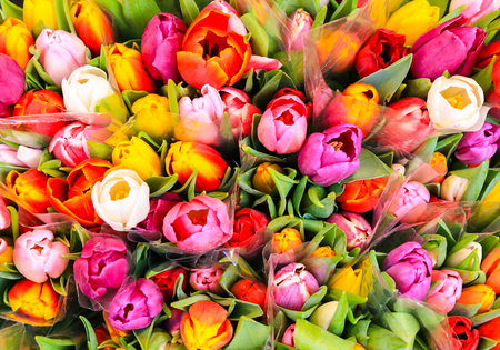 bloomy: Bunch of multicolored tulips at a market stall.