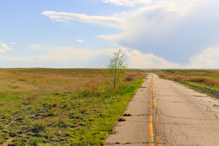 Old road forming cracks and getting overrun with grass leading into the grassland. Stock Photo
