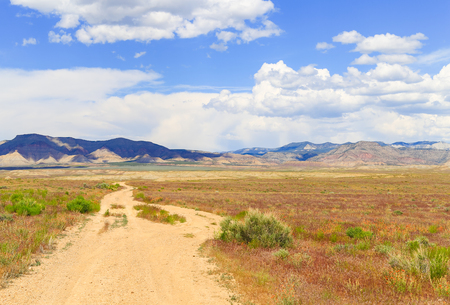 Path leading into the North Fruita Desert near Loma in Colorado with mountains in the back and blooming wildflowers in the dry grass. Stock Photo