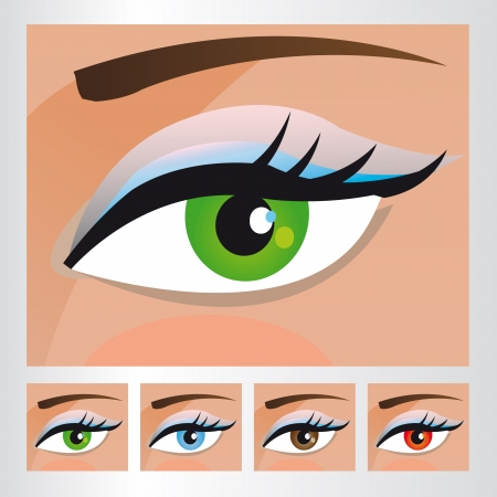 Woman eyes of different colors Stock Vector - 18502541