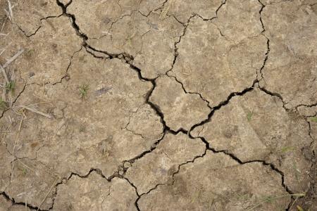 splitting up: Cracked soil dry