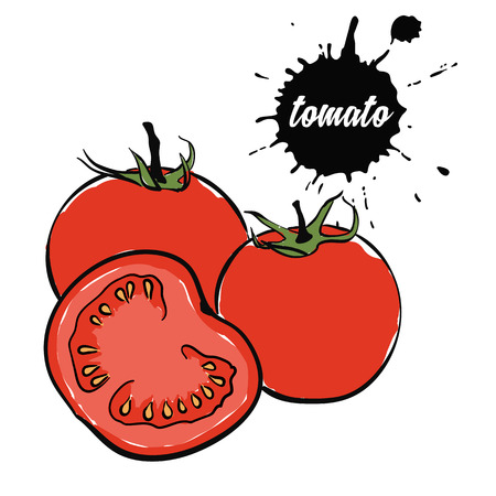 Isolated eco natural food vegetables red tomato Illustration