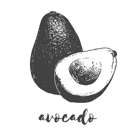 ripe avocado fruit half organic and wholesome vegan