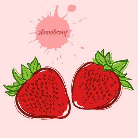 hand draw of strawberry Illustration