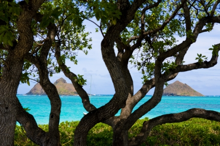 Hawaii sea Stock Photo