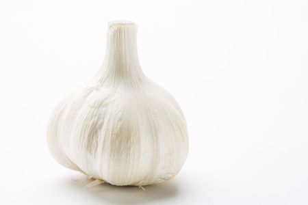 Garlic on the White background photo