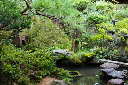 Japanese Samurai Garden