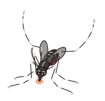Mosquito Reklamní fotografie - 120080145