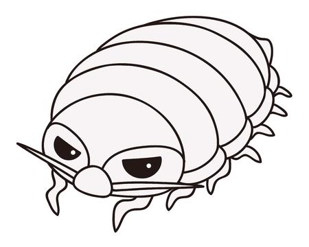 Giant isopod Reklamní fotografie