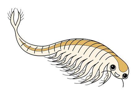 Sea Monkey Artemia Character Illustration Stok Fotoğraf
