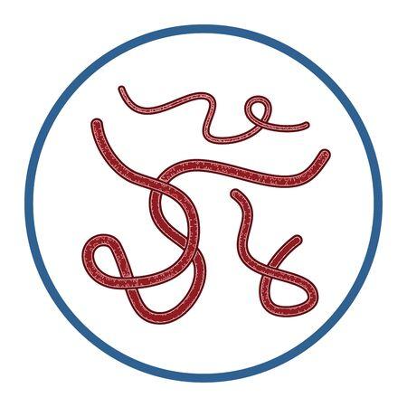 Ebola Virus Vector Illustration Clip Art