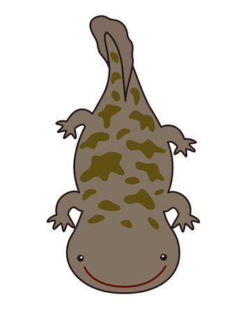 Great salamander illustration