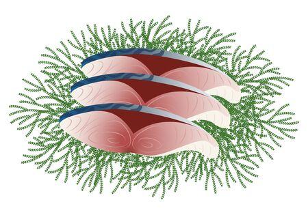 Assorted assorted salmon fillet illustration 版權商用圖片