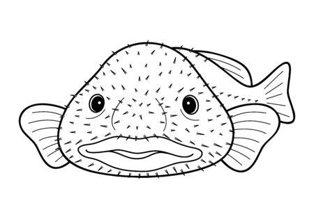 Blobfish Nuudou Kajika Deep Sea Fish Character Vector Illustration