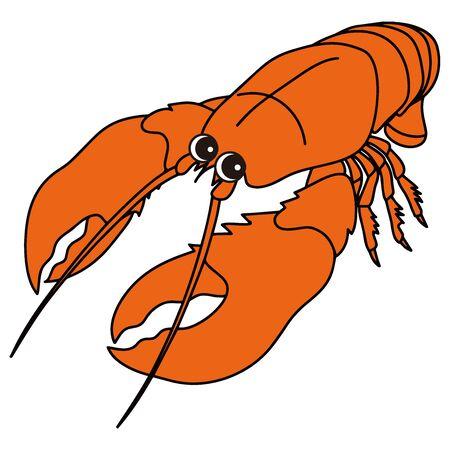 Omar Lobster Character Vector Illustration