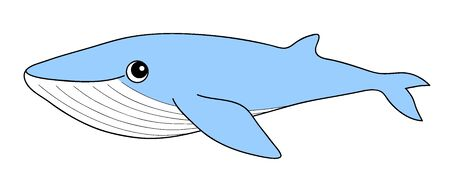 Blue Whale Bluewhale Character Illustration Clip Art