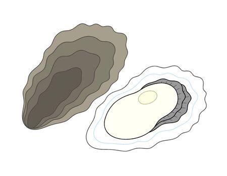 Oyster Oyster Illustration Clip Art Stock fotó