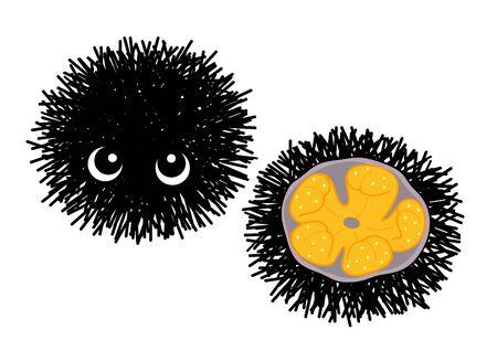 Sea urchin character illustration clip art