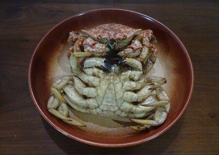 Chestnut Helmet crab Photo