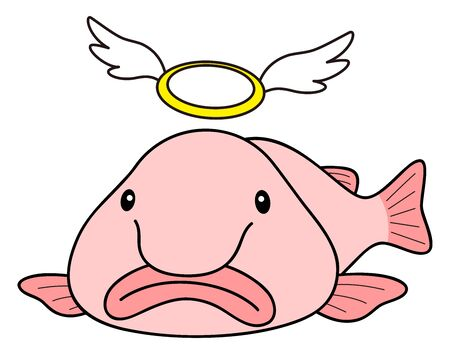 Blobfish (Nuudou Kajika) Illustration Vector