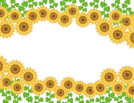 Sunflower Frame Illustration Sunflower 写真素材