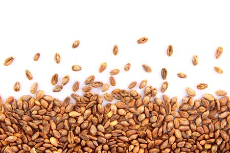 Super barley grains scattered on a white background.