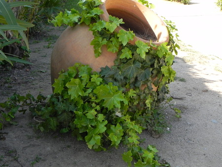 earthen: Vaso di terra