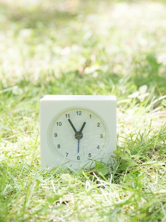 芝生の庭、12:55 12:55 に白い四角形のシンプルな時計